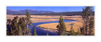 Picture: Yellowstone River panorama, Hayden Valley, Yellowstone National Park, Wyoming