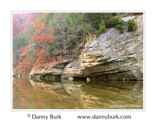 Picture: Fall color, Sugar Creek, Turkey Run State Park, Indiana