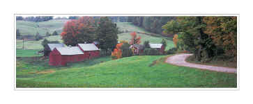 Picture: Early morning, Jenne Farm, Vermont